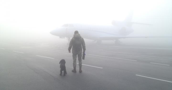 ДСНС попереджає про погіршення погодних умов в Україні